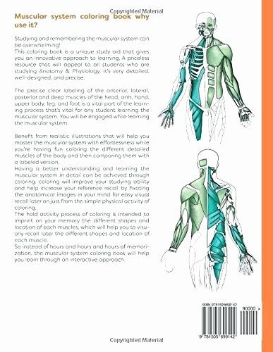 Free Printable Anatomy Worksheets Muscular System Coloring Pages