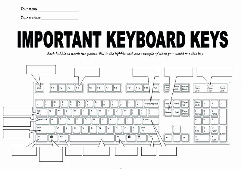Free Printable Computer Keyboarding Worksheets Best Of Typing Worksheets for Beginners