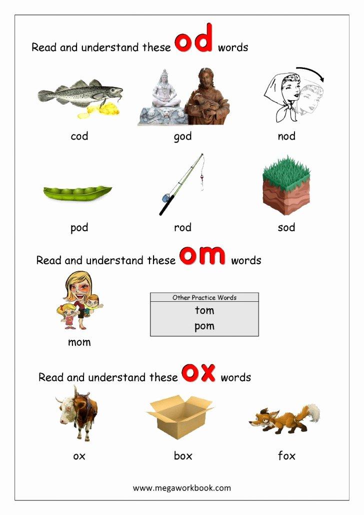 Free Printable Cvc Worksheets 038 Free Printable Word Family Ig for Kindergarten 5 Rhyming