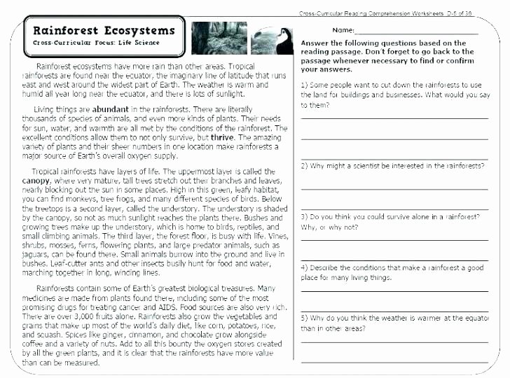 Free Printable Ecosystem Worksheets Free Printable Ecosystem Worksheets Energy Worksheet