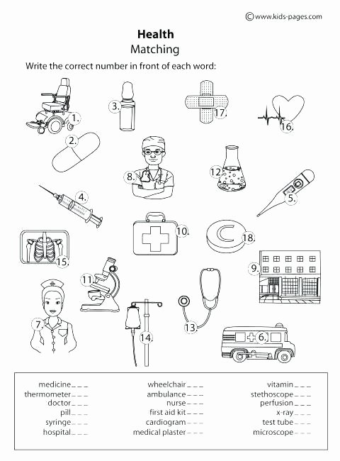Free Printable Health Worksheets 3rd Grade Health Worksheets