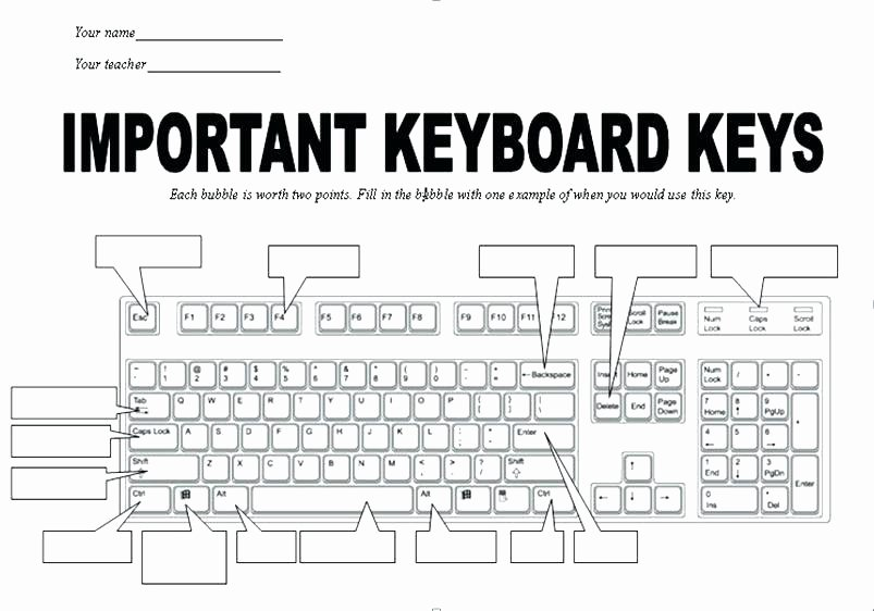 Free Printable Keyboarding Worksheets New Typing Worksheets for Beginners