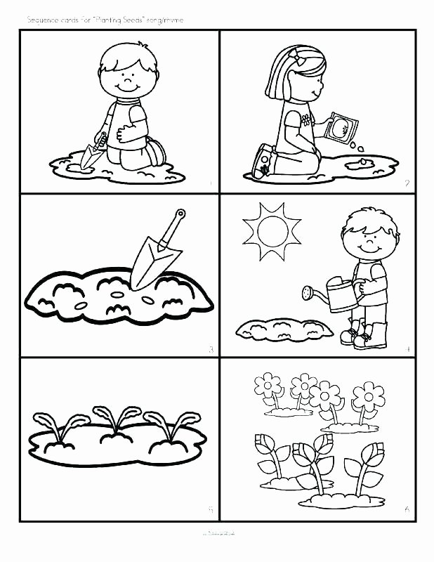 Free Printable Story Sequencing Worksheets Free Sequencing Worksheets for 1st Grade
