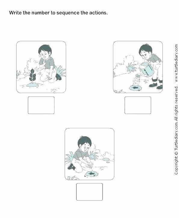 Free Printable Story Sequencing Worksheets Sequence Worksheets Grade Number Pattern Patterns Free 2