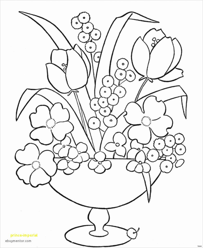Fruit Colouring Pages 27 Excellent Flowers Look Like Birds Image