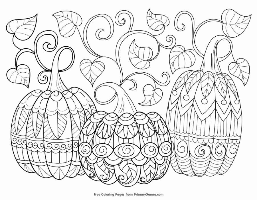 Fruit Colouring Pages 9 11 Coloring Sheets