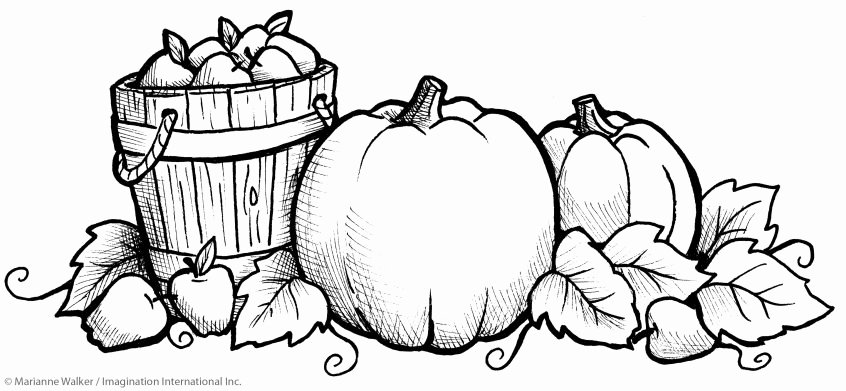 Fruit Colouring Pages Coloring Bunch Ideas Free Coloring Pages Preschool