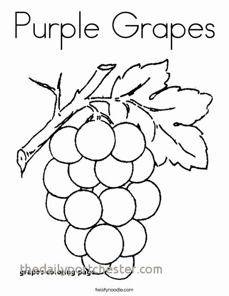 grapes coloring page unique 22 grapes coloring page of grapes coloring page