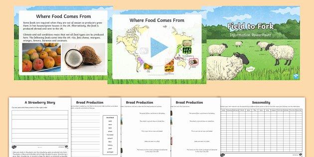 Fruits and Vegetables Worksheet Ks2 Field to fork Resource Pack Seasonality Food