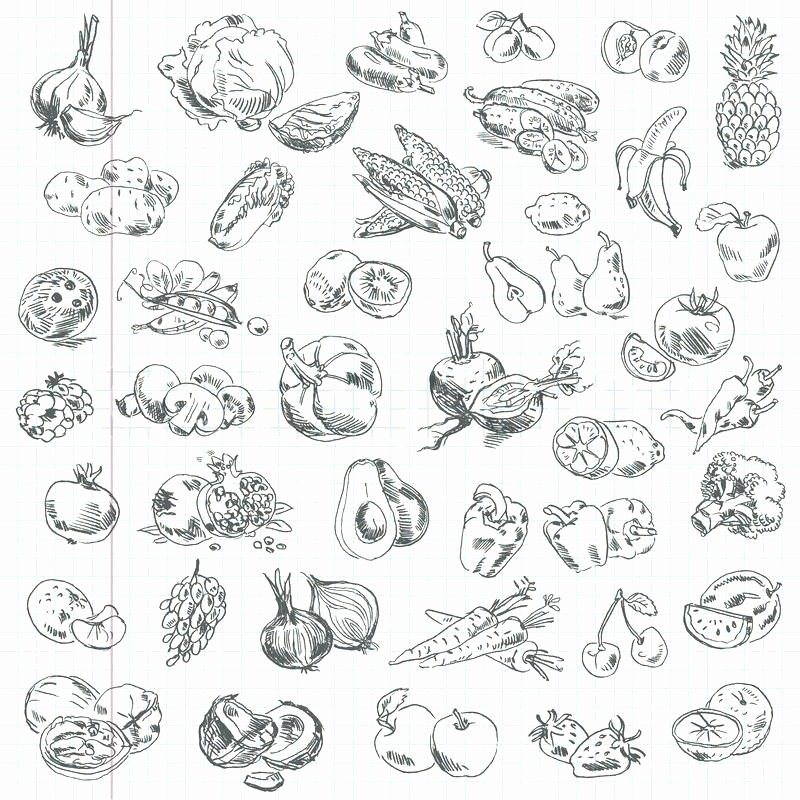 Fruits and Vegetables Worksheets Pdf Drawing Fruit – Nas Srilanka