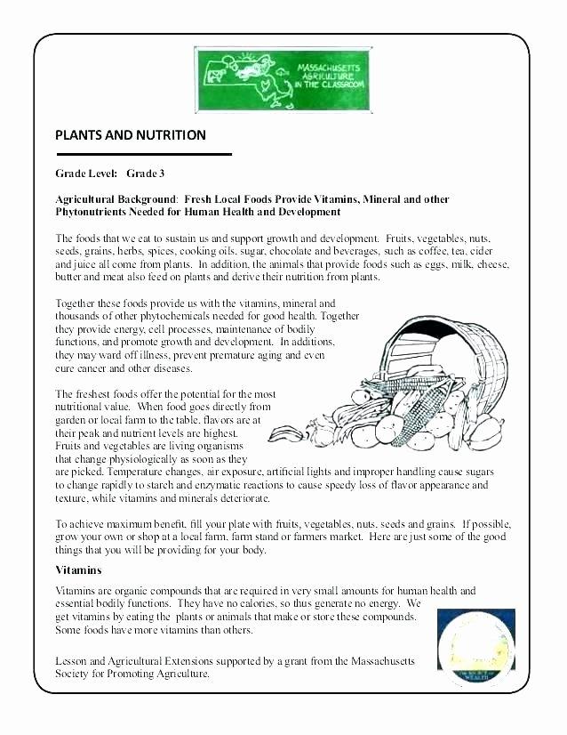 Fruits and Vegetables Worksheets Pdf Fifth Grade Health Worksheets