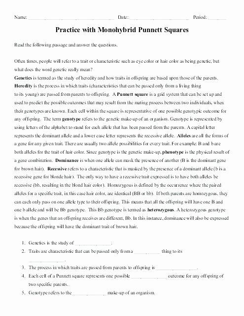 Genetics and Heredity Worksheet Beautiful Heredity Punnett Squares Worksheets