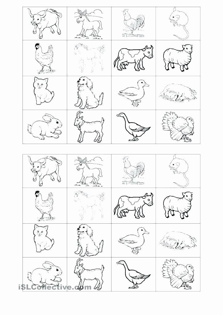 Habitat Worksheets for 1st Grade Farm Animals Worksheets for Grade 1