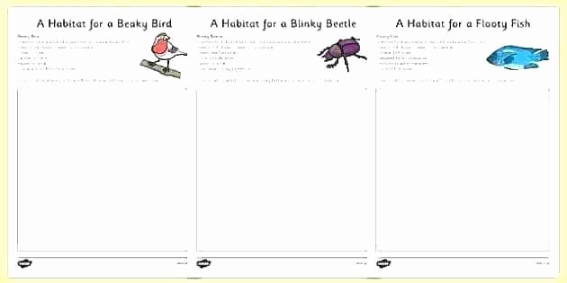 Habitat Worksheets for 1st Grade Free Insect Worksheets