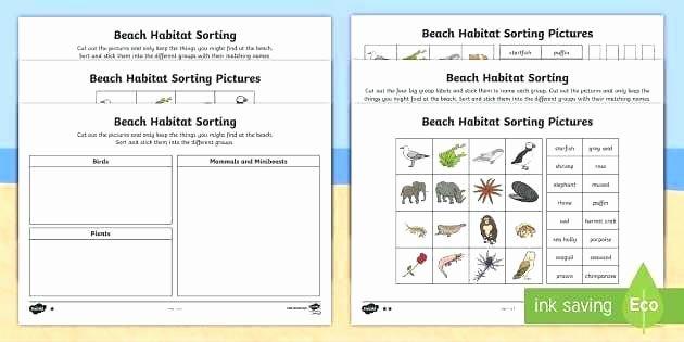Habitat Worksheets for 1st Grade Habitat Worksheets