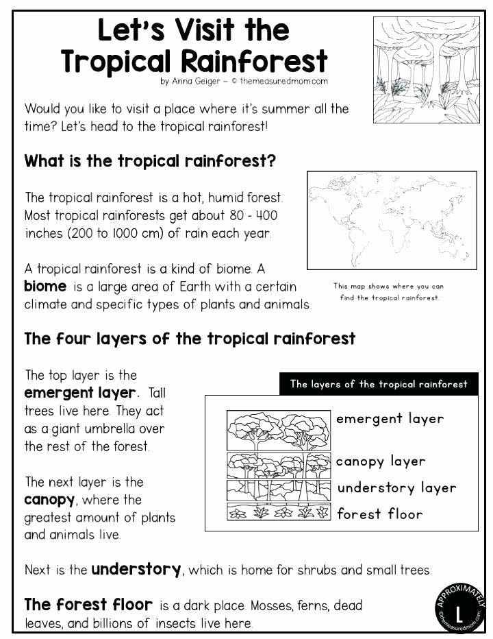 Habitat Worksheets for 1st Grade Insect Habitat Worksheets