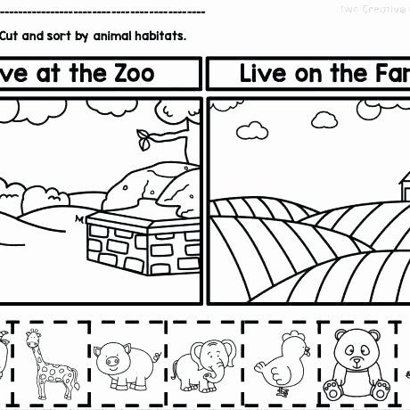 Habitat Worksheets for 1st Grade sorting Worksheets for First Grade Free Kids Math Printable