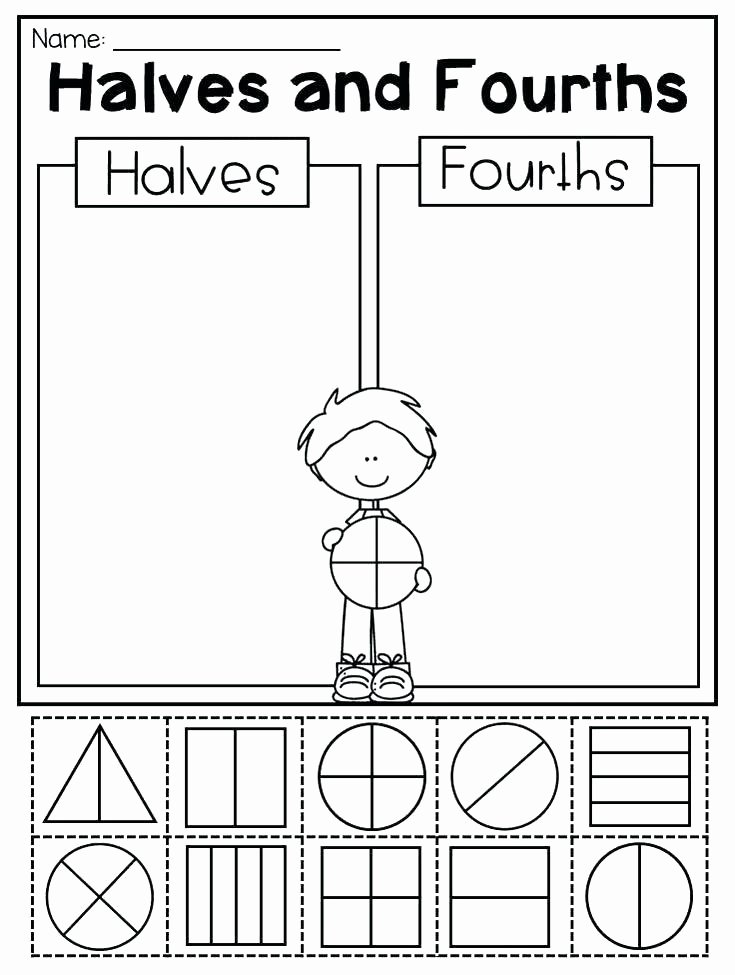 Halves and Fourths Worksheets sorting Activity Worksheets