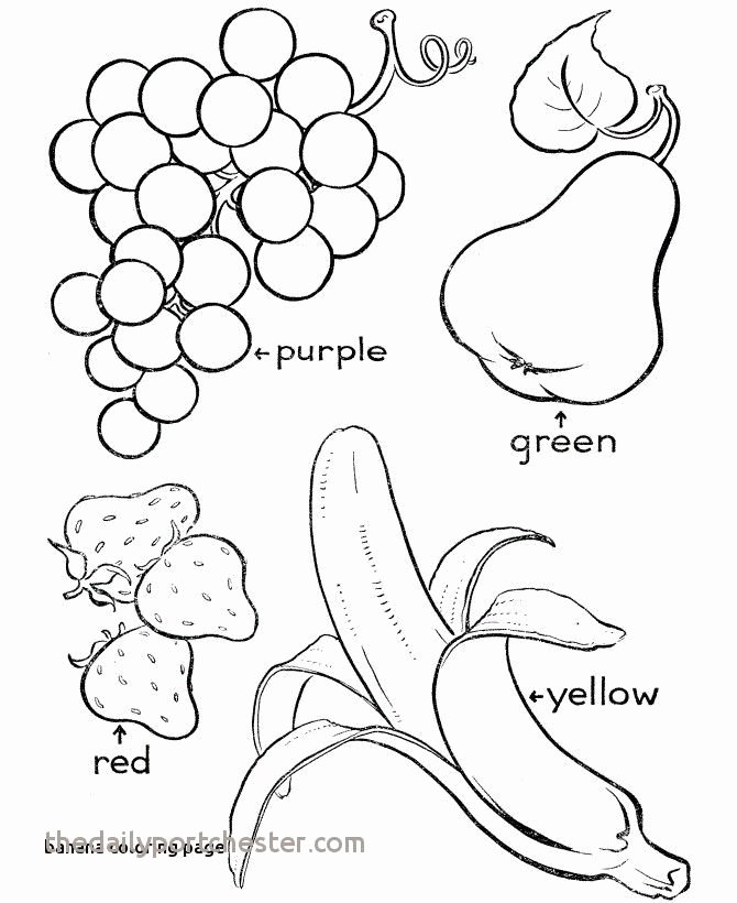 Heart Coloring Worksheet Awesome Fruit Bowl Colouring Pages Free – Kursknews