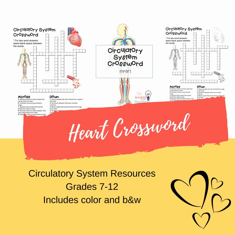 Heart Diagram Worksheet Blank Blank Heart Diagram Inspirational Heart Diagram Unlabeled