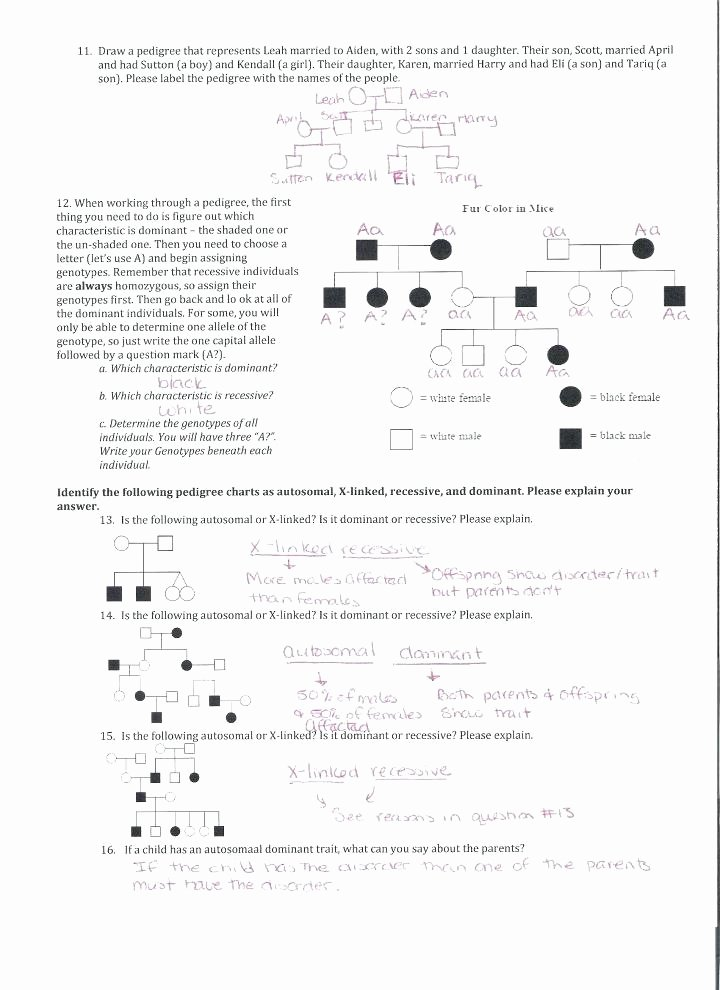 Heredity Traits Worksheets New Sat Math Practice Worksheets with Answers