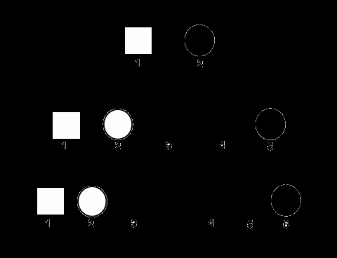 Heredity Traits Worksheets Unique Pedigrees Practice Classical Genetics