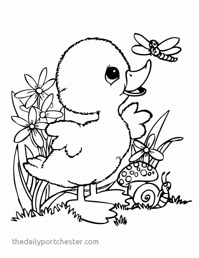 Hibernation Coloring Page Fresh Migrating Animals Coloring Pages – Trasporti