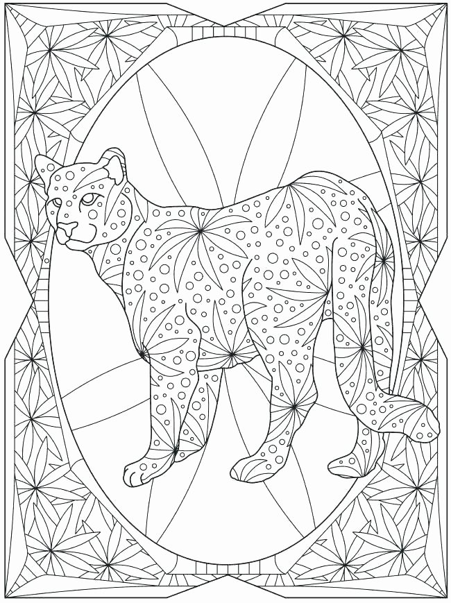 Hibernation Coloring Page Nocturnal Animal Coloring Pages Album Sabadaphnecottage