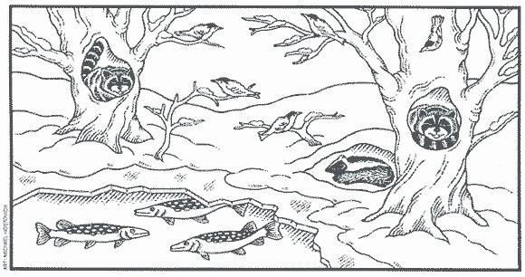 Hibernation Worksheet for Preschool Animal Hibernation Worksheets – Onlineoutlet