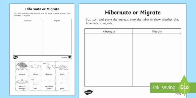 Hibernation Worksheet for Preschool Animals that Hibernate or Migrate Worksheet Worksheet
