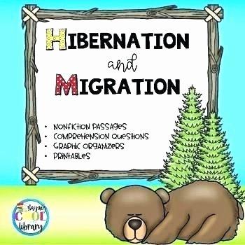 Hibernation Worksheet for Preschool Free Printable Hibernation Worksheets