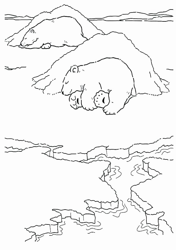 Hibernation Worksheet for Preschool Hibernation Worksheets for First Grade Hibernating Animal