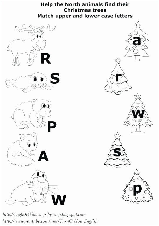 Hibernation Worksheet for Preschool Hibernation Worksheets for Kindergarten Preschool