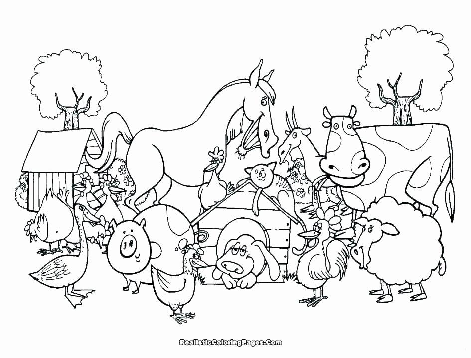 Hibernation Worksheet for Preschool Hibernation Worksheets for Preschoolers