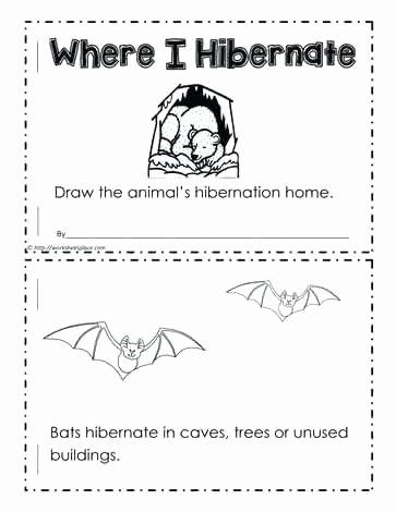 Hibernation Worksheet for Preschool Syllable Worksheets for Kindergarten Syllable Worksheets