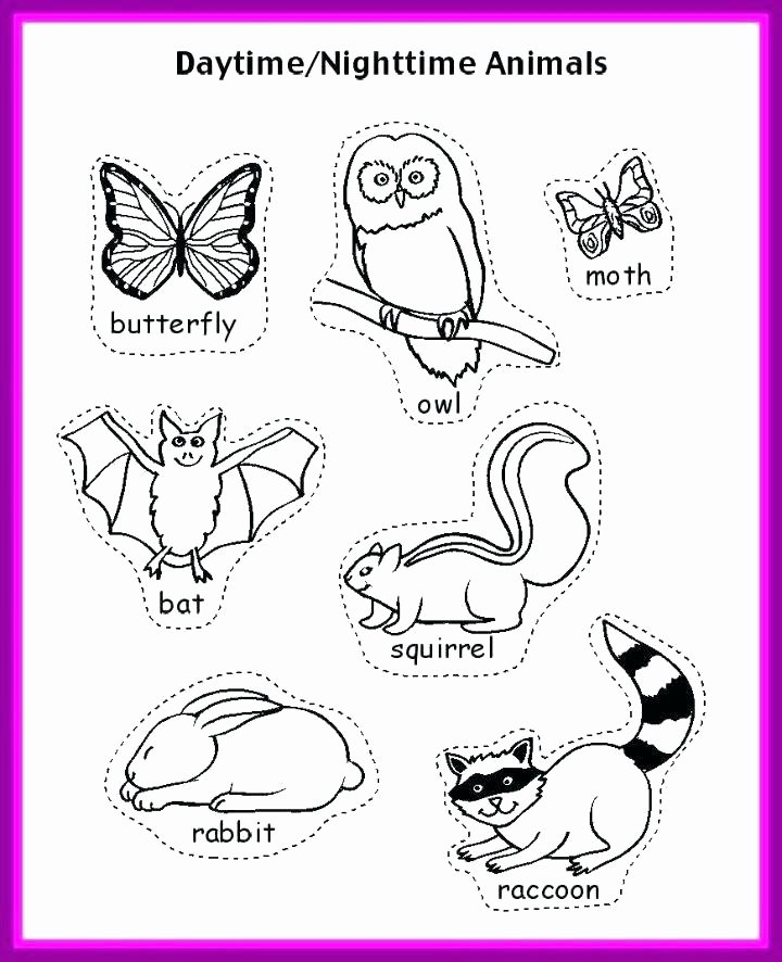 Hibernation Worksheets for Kindergarten Animals that Hibernate Preschool Hibernating Worksheets for