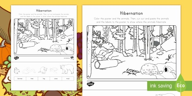 Hibernation Worksheets for Kindergarten Hibernation Cut and Color Worksheet Worksheet Fall