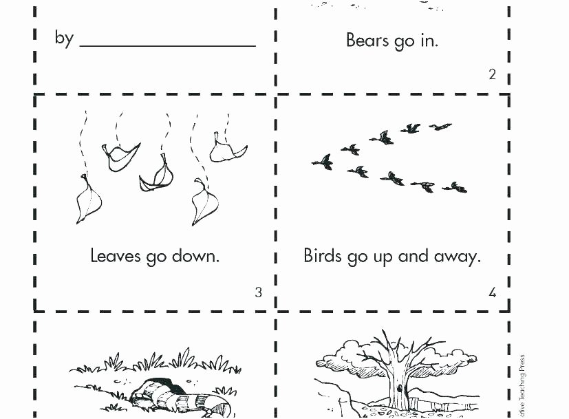 hibernation worksheets for kids hibernation worksheets for kids animal adaptations worksheets grade experimental design worksheet high school answers