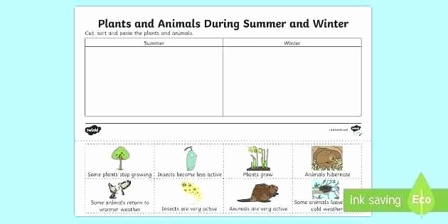 Hibernation Worksheets for Kindergarten Winter Bear Hibernation Worksheets Preschool Printable Cut