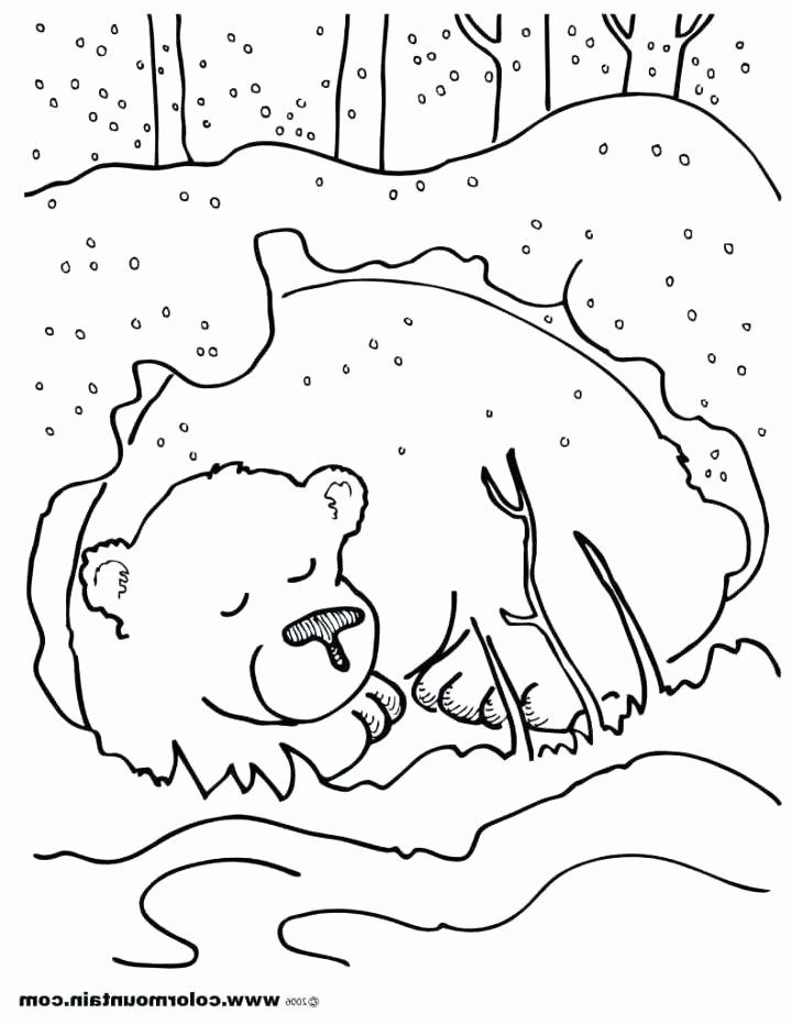 Hibernation Worksheets for Preschool Hibernation Worksheets for Preschoolers – Kenkowomanfo