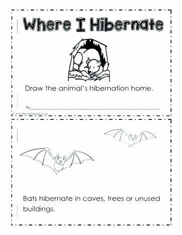 Hibernation Worksheets for Preschool Hibernation Worksheets