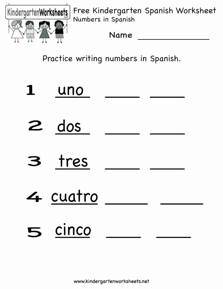 High School Spanish Worksheets Free Spanish Worksheets for High School Vocabulary