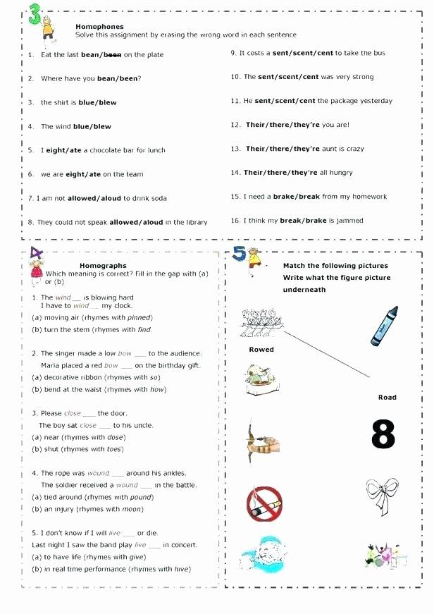 Homograph Worksheets 5th Grade Printable Homophone Worksheets