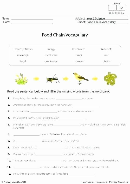 Homographs Practice Worksheets Ecosystem Worksheets 5th Grade