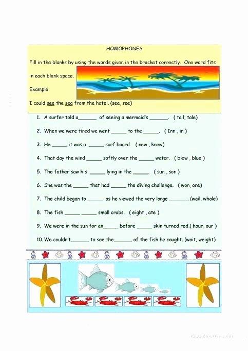 Homographs Practice Worksheets Free Homograph Worksheets