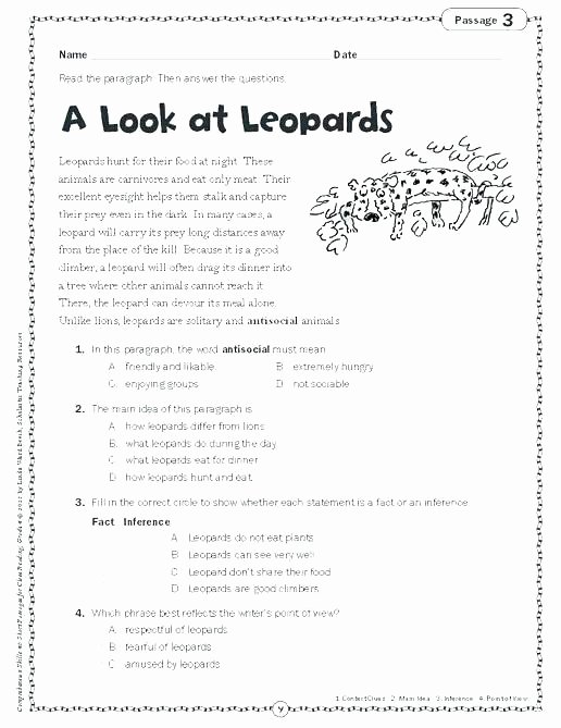 Homographs Worksheet 3rd Grade Procedural Text Worksheets