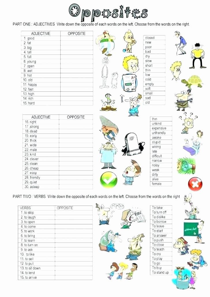 Homonyms Worksheets 5th Grade Opposites Worksheets for Grade 2