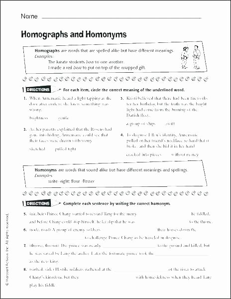 homophones worksheets for grade 5 there and to worksheet teaching 5th pdf wor have fun homophone