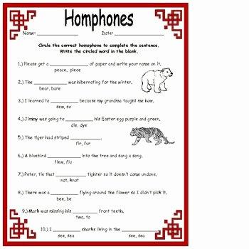 Homophones Anchor Chart Homophones Worksheets Activities & More