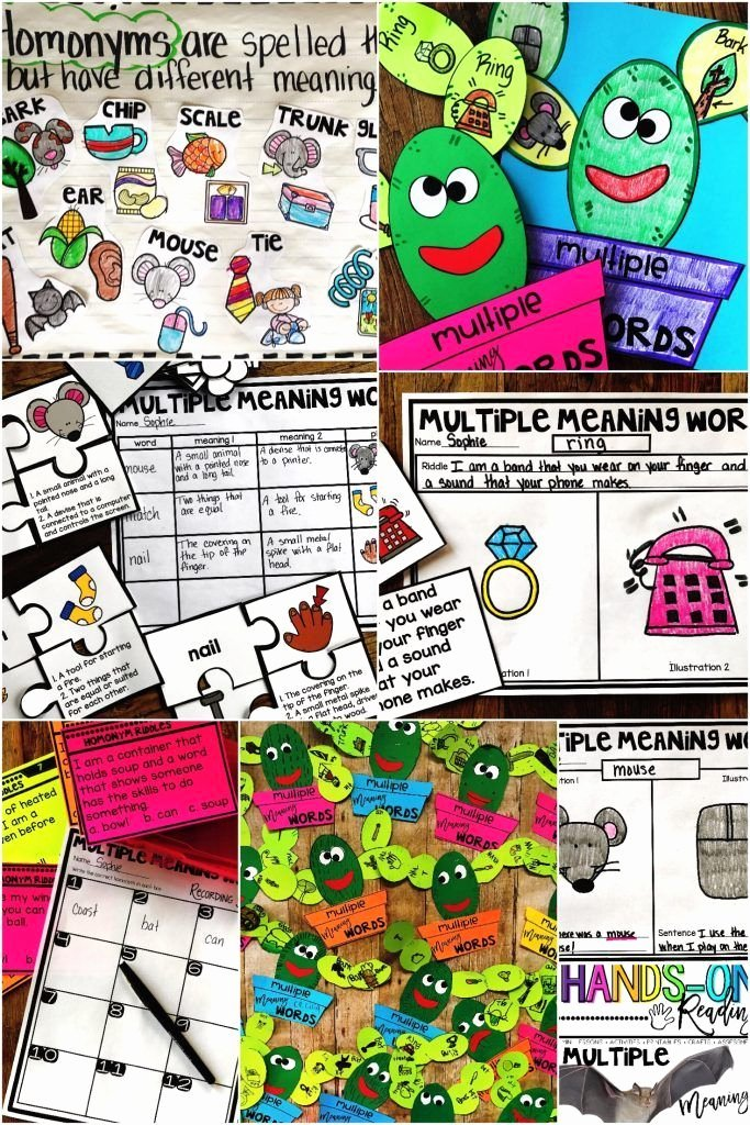 Homophones Anchor Chart Multiple Meaning Words Classroom Fluency